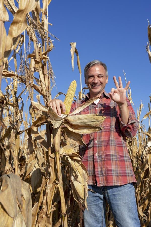 Cheerful Farmer met Ripe Corncob, die oké hand-teken toont royalty-vrije stock foto