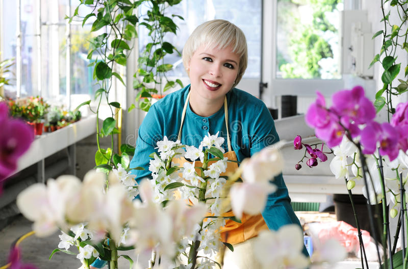 Download Cheerful florist stock image. Image of tropical, greenhouse - 35304209