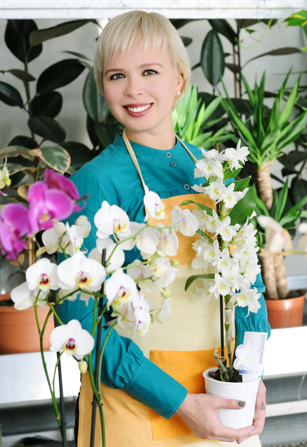 Download Cheerful Florist Royalty Free Stock Photos - Image: 35304608