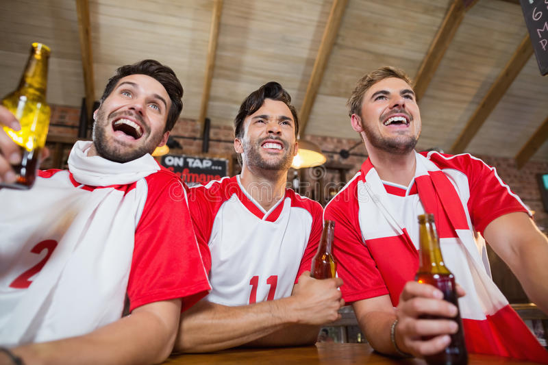 Cheerful friends holding beer bottles. In pub royalty free stock photo