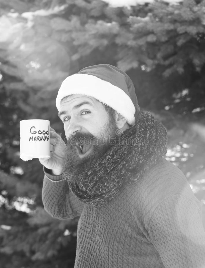 Cheerful handsome man in santa claus hat, bearded hipster with beard and moustache drinks from cup with good morning. Text on sunny winter day outdoors on royalty free stock photos