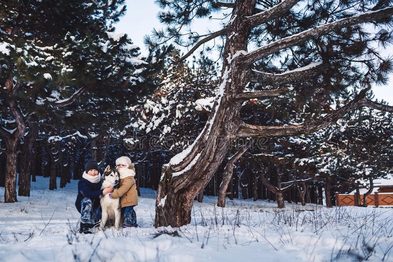 Cheerful little boy and girl are standing with their big dog in the winter near a crooked tree in the forest. royalty free stock image