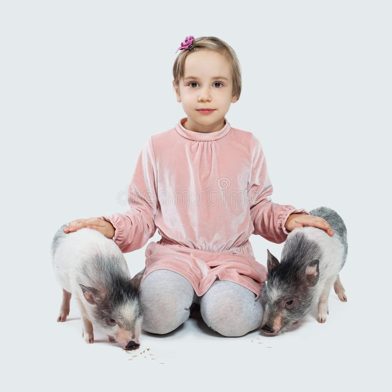 Cheerful little child girl and pigs. Child and pets stock photos