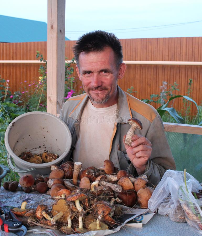 Cheerful man mushroom picker gathered a lot of edible mushrooms at the table smiling happy stock photography