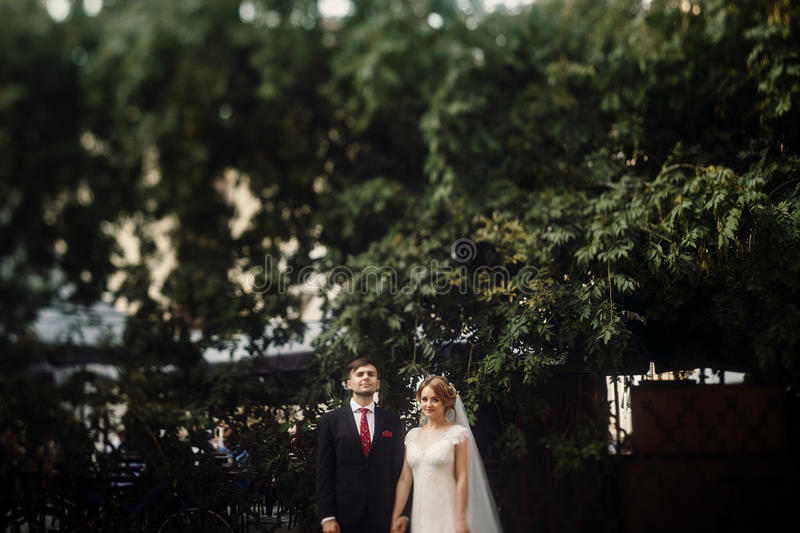 Cheerful newlywed couple portait, gorgeous bride in fairytale white wedding dress holding hands with handsome groom outdoors in p stock images