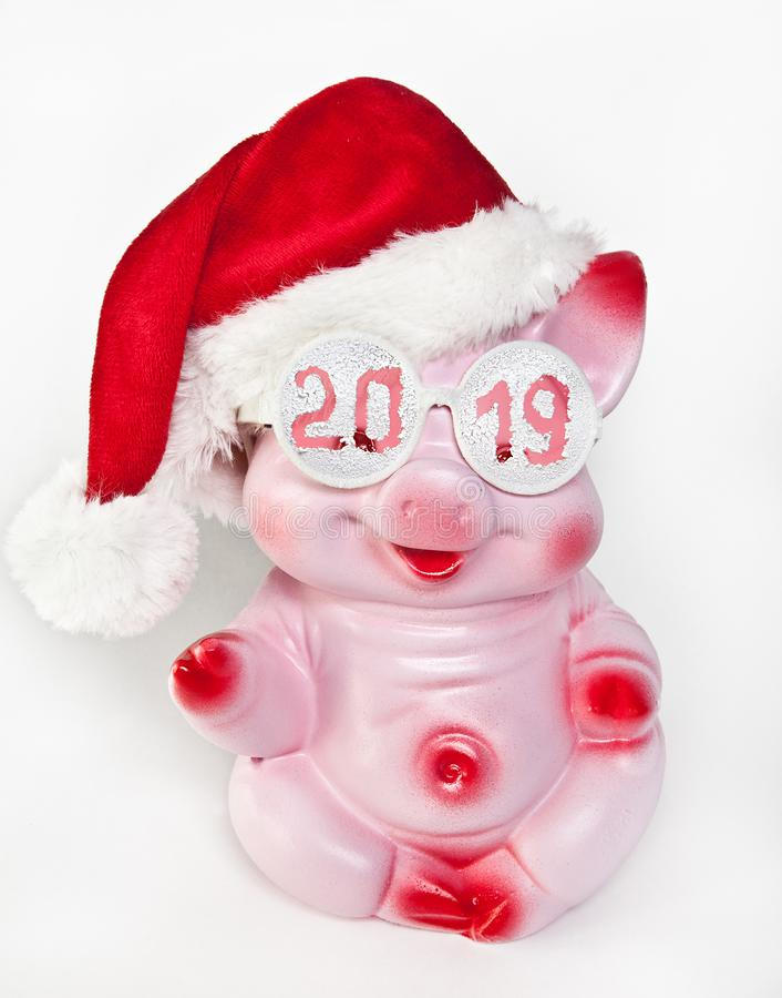 Cheerful pink pig in a new year`s cap and glasses with the inscription 2019 royalty free stock photography
