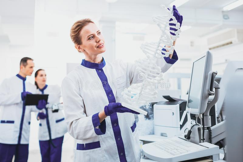 Cheerful practitioner demonstrating model of DNA stock photo