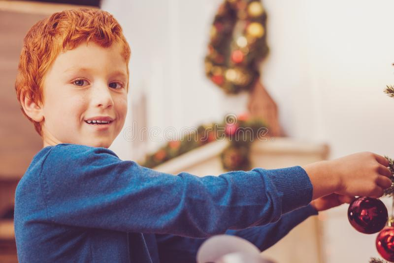 Cheerful preteen boy putting decorations on Christmas tree royalty free stock images