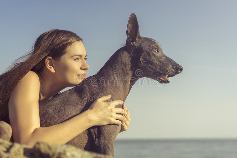 Cheerful pretty young girl sitting and hugging her dog xoloitzcuintli at the blue sky and sea on a stone beach.  stock photography