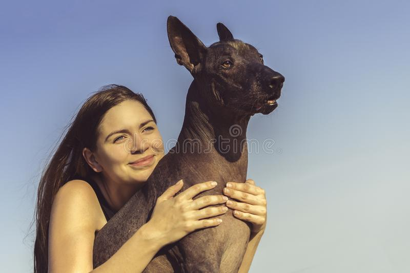 Cheerful pretty young girl sitting and hugging her dog xoloitzcuintli at the blue sky at sunset stock image