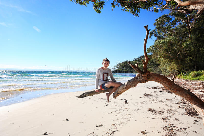 Cheerful teen boy sitting on tree holiday at the beach Australi stock photo