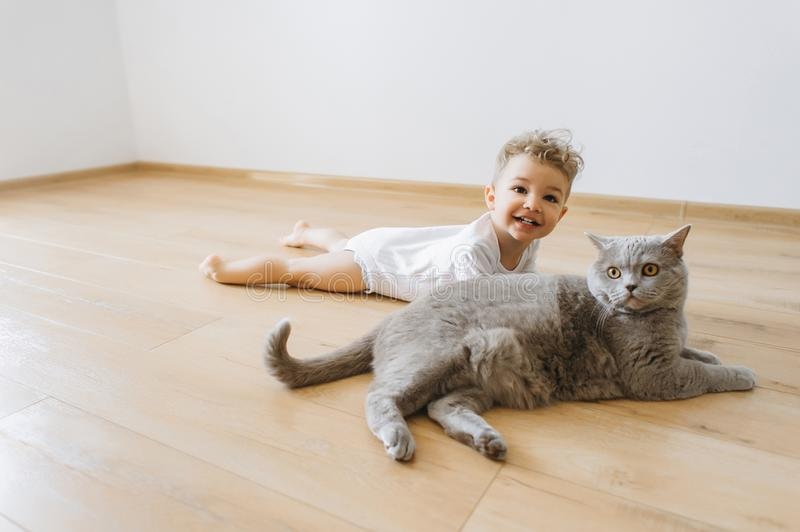 Cheerful toddler boy and grey british shorthair cat lying on floor together. At home royalty free stock photography