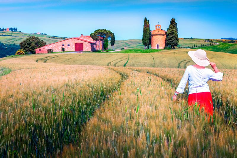 Cheerful woman enjoying the view in grain fields, Tuscany, Italy. Pretty happy woman in red skirt and straw hat enjoying the freedom.  Rural landscape with grain royalty free stock photography