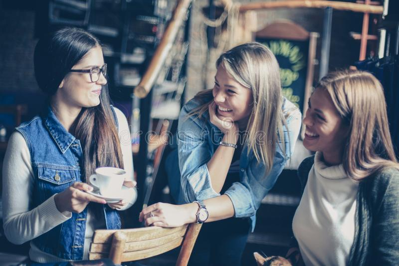 Cheerful young girls talking in cafe. royalty free stock image