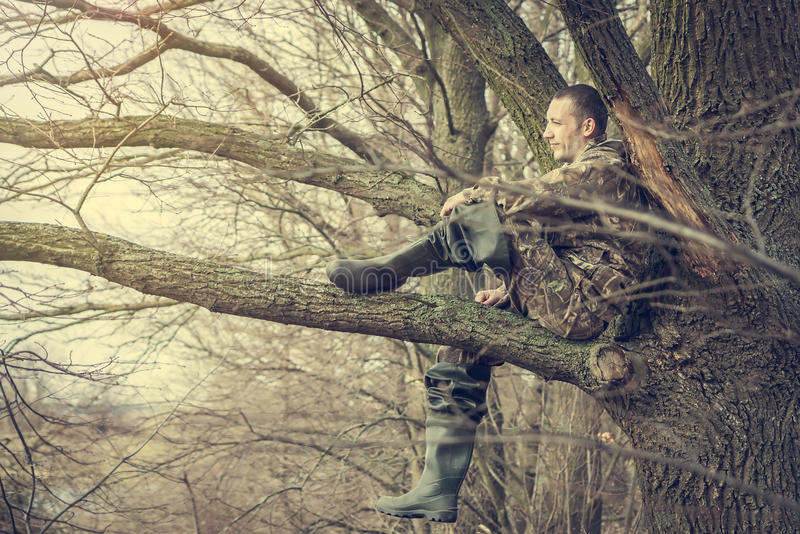 Cheerful young man sitting on tree branch looking into the distance and enjoy the scenery stock photos