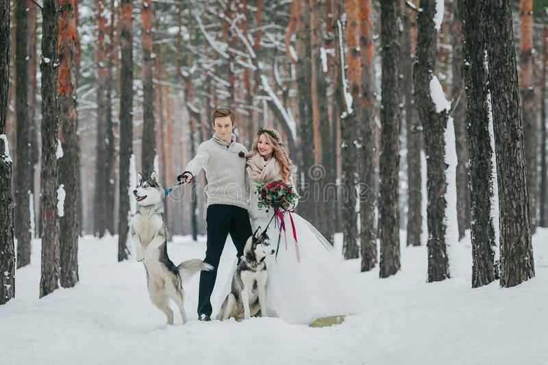Cheerfull couple with two siberian husky are posed on background of snowy forest. Artwork. Copy space royalty free stock image