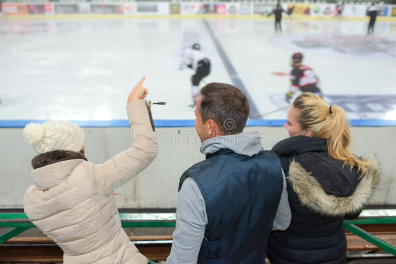 Cheering game ice hockey. Cheering a game of ice hockey stock photography