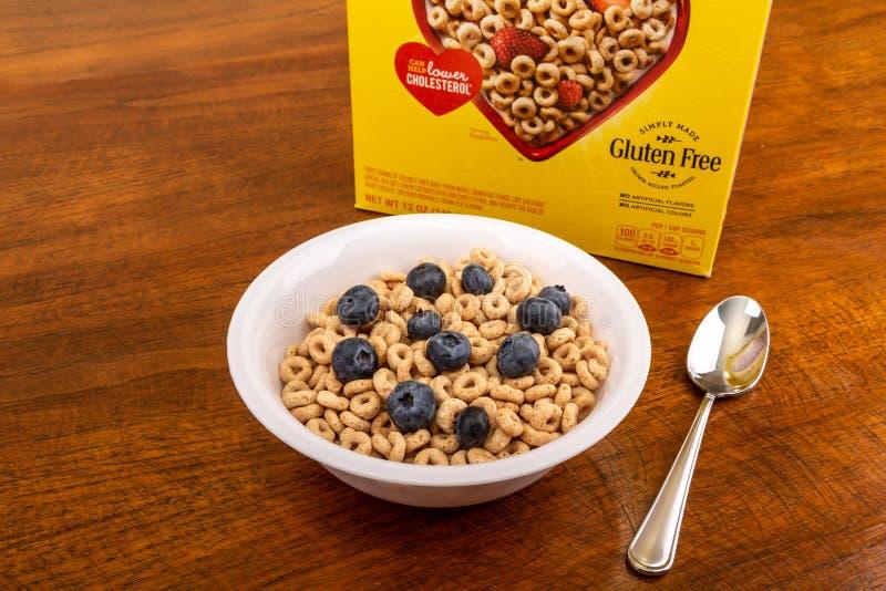 Cheerios med blåbär royaltyfria bilder