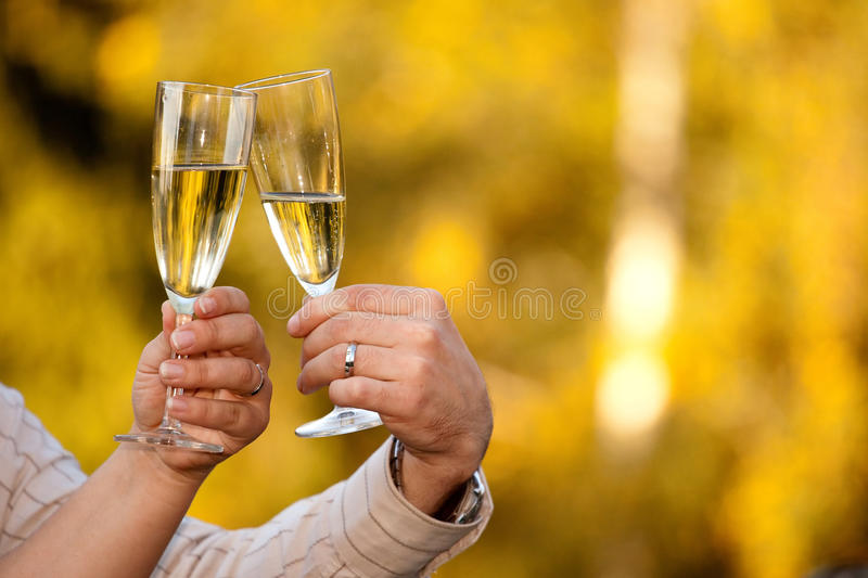 Download Cheers stock photo. Image of newyear, champagne, champaign - 18667700