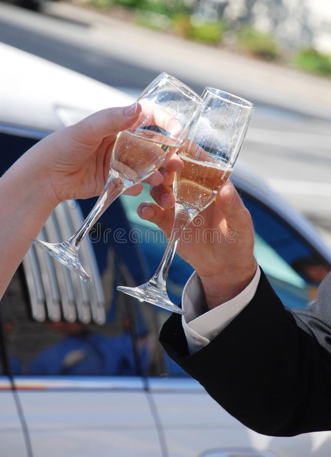 Cheers Bride And Groom Stock Photography