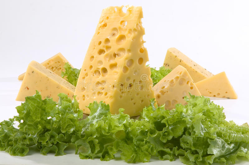 Download Cheese stock photo. Image of background, white, fresh - 21496202
