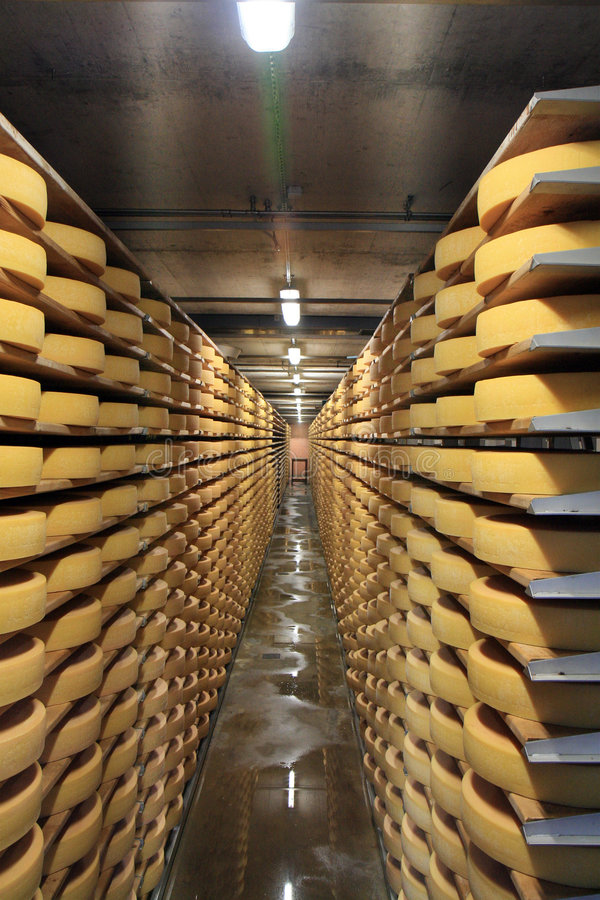 Download Cheese In Cellar stock image. Image of stack, maturation - 6270277