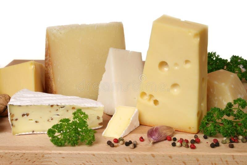 Cheese choice stock photos