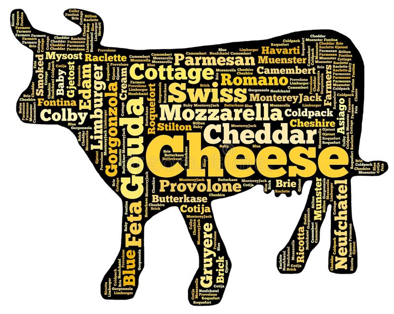 Cheese cow royalty free stock photo
