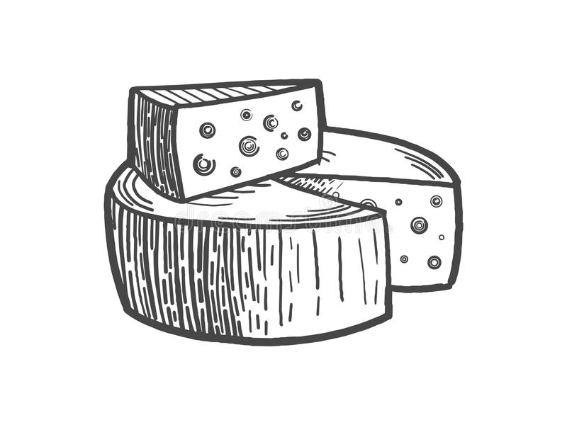 Cheese engraving style vector illustration. Scratch board style imitation stock illustration