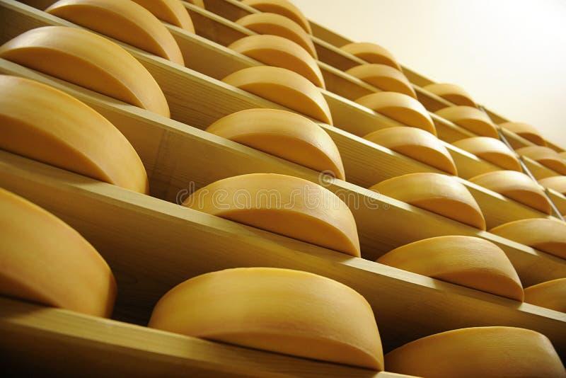 Cheese factory in switzerland stock image