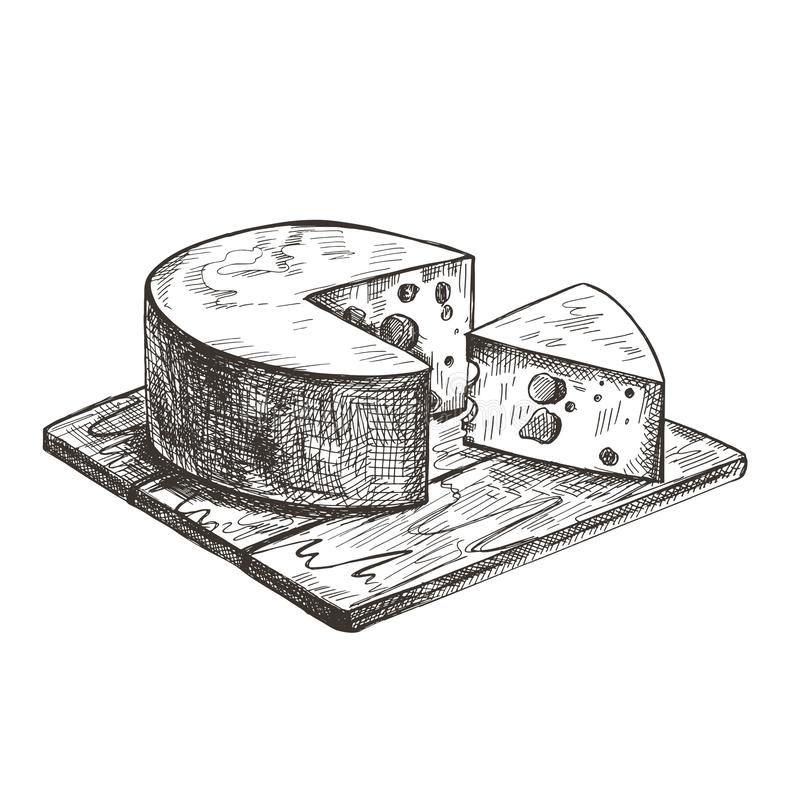 Cheese lies on a wooden cutting board. Vector retro illustration. stock illustration