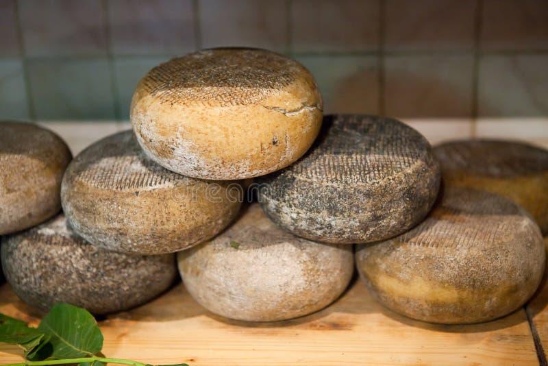 Cheese Pecorino of Pienza royalty free stock image