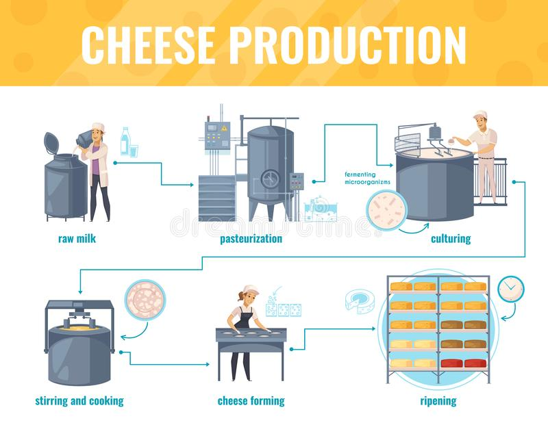 Cheese Production Cartoon Infographics stock illustration