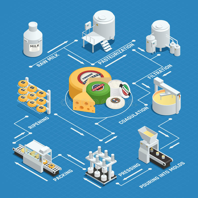 Cheese Production Factory Isometric Flowchart. Dairy factory cheese production process isometric flowchart with milk pasteurization coagulation pressing waxing vector illustration