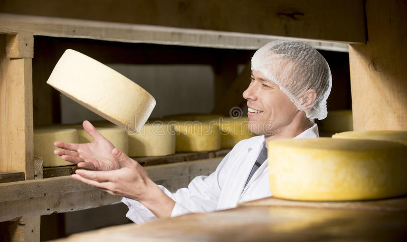 Cheese production at factory stock images