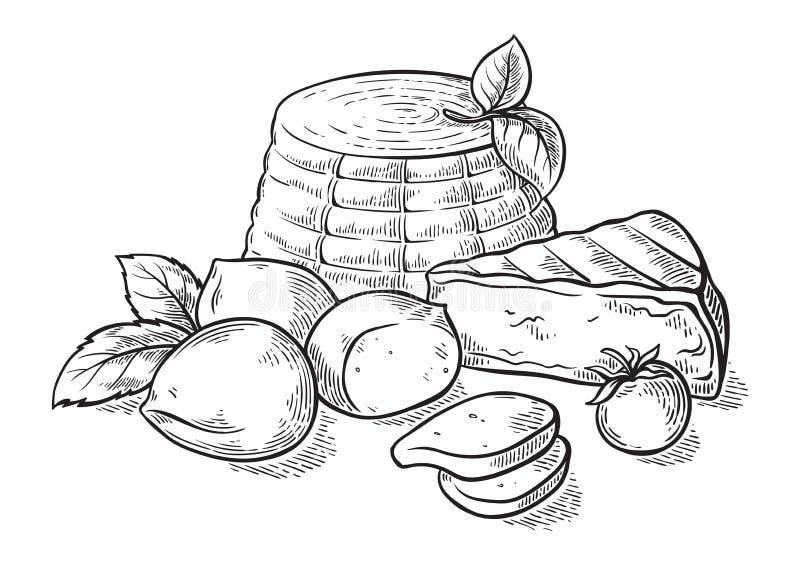 Cheese ricotta mozzarella hand drawn set engraving. Vector illustration royalty free illustration