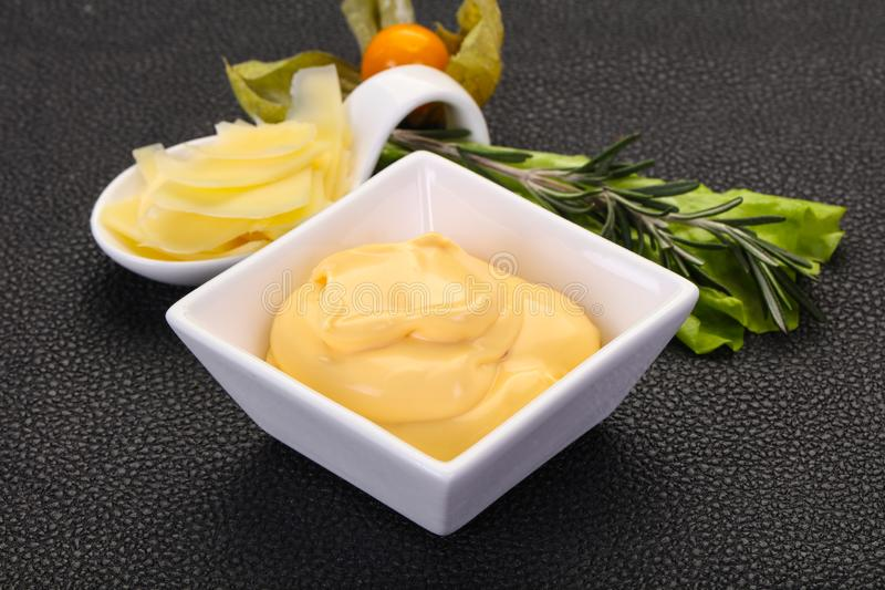 Cheese sauce in the bowl royalty free stock photo