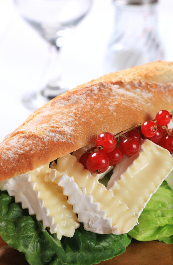 Cheese sub sandwich. Sub sandwich with white rind cheese and lettuce royalty free stock photo