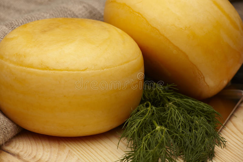 Cheese wheels. With dill and knife on wooden table royalty free stock photos