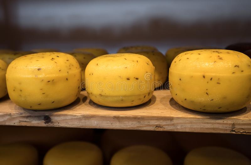 Cheese wheels in Amsterdam store. Netherlands stock image