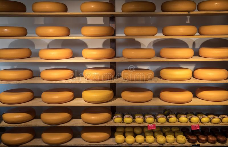 Cheese wheels in Amsterdam store. Netherlands stock images