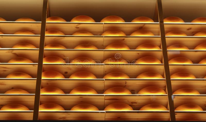 Cheese wheels in cheese shop window in Vienna.  royalty free stock images