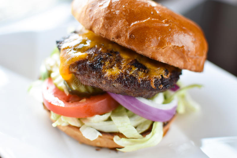 cheeseburger royaltyfri foto