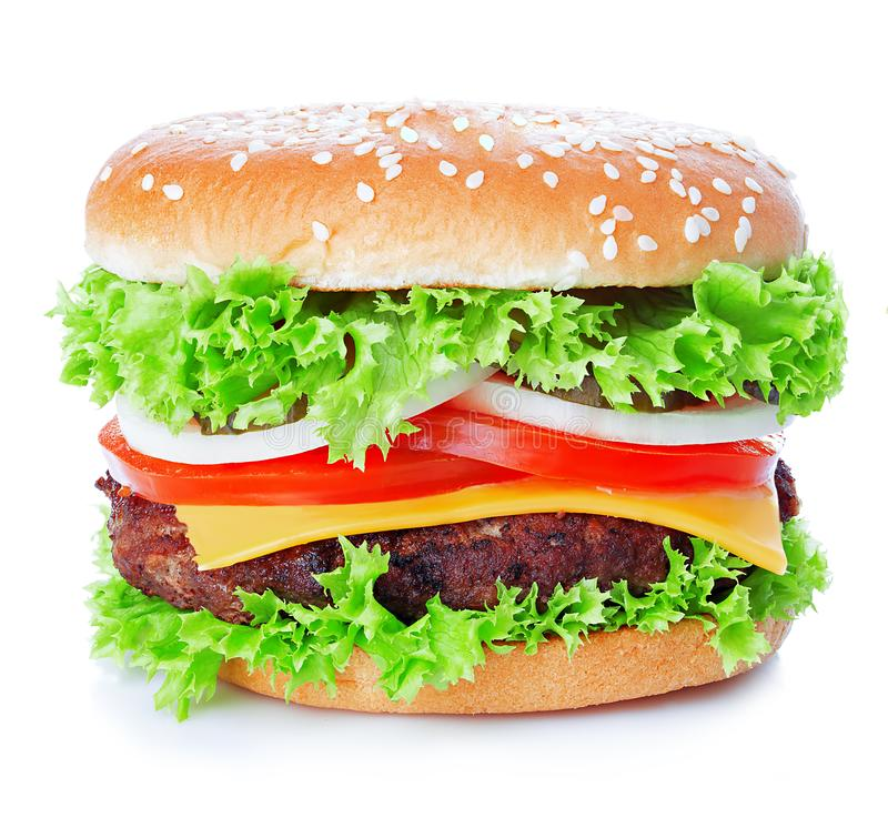 Cheeseburger close-up isolated on a white background royalty free stock image
