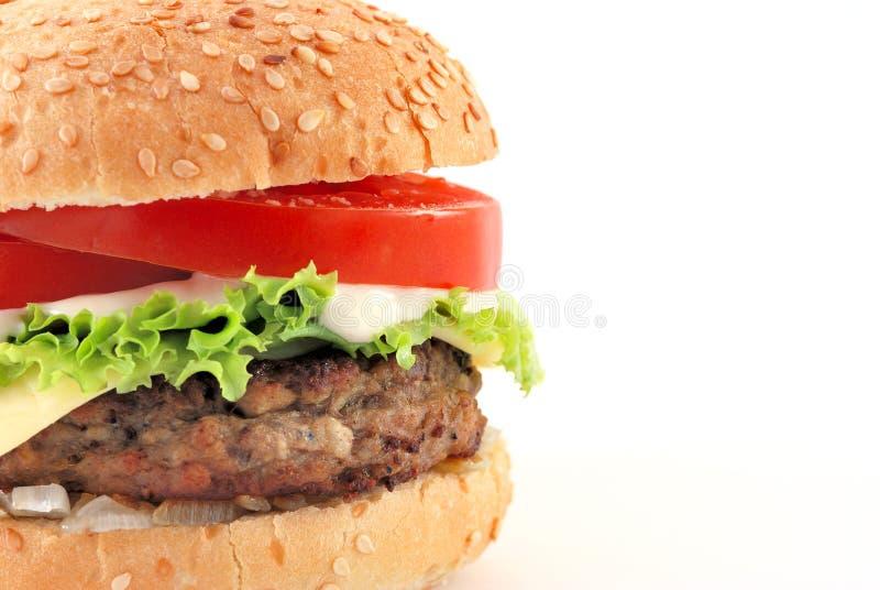 cheeseburger przestrzeń odbitkowa przyrodnia fotografia royalty free