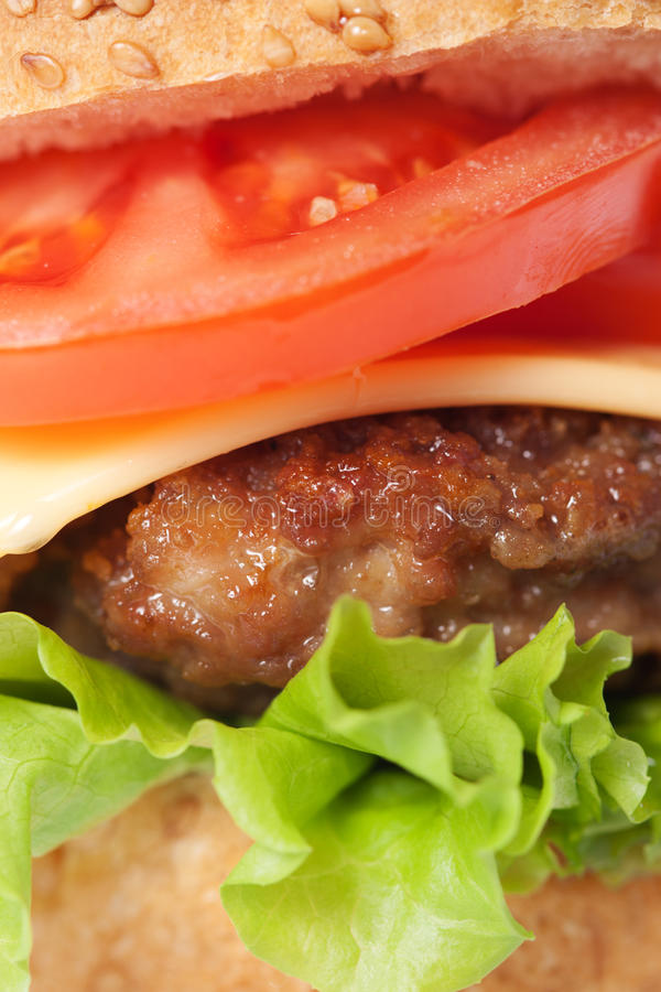 Free Cheeseburger With Tomatoes And Lettuce Stock Photos - 18996153