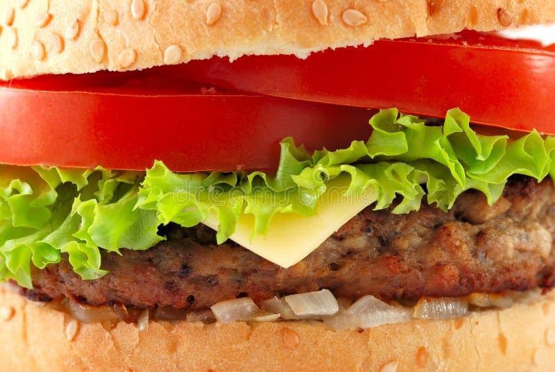 cheeseburger zbliżenie zdjęcie stock