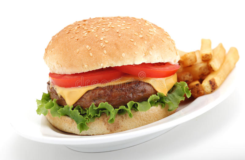 cheeseburgerfransmansmåfiskar royaltyfri fotografi