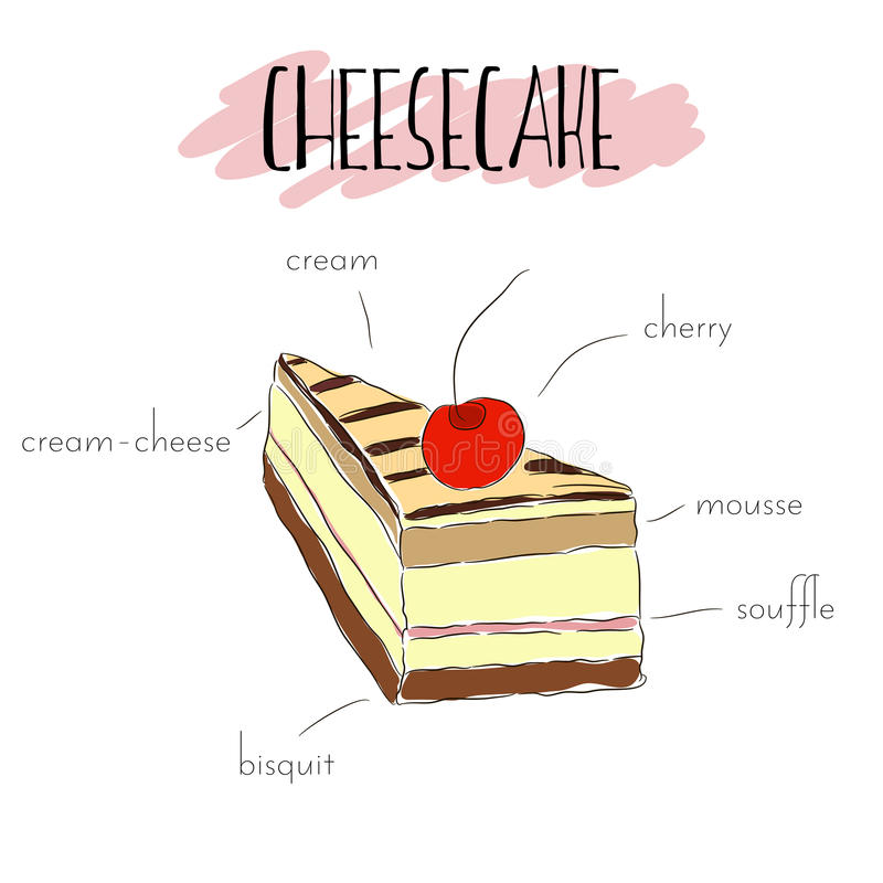 Cheesecake and cherry. Piece of cheesecake with cream, chocolate drip, biscuit, mousse, cream-cheese and cherry. Vector hand drawn illustration. List of main royalty free illustration