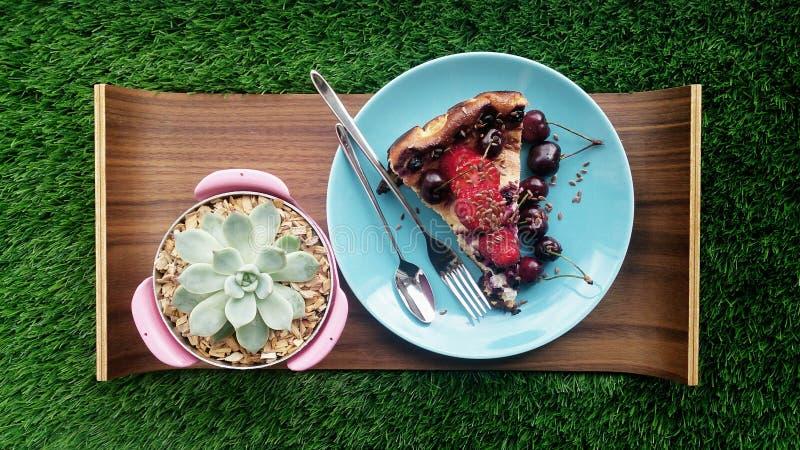 cheesecake domowej roboty Śniadaniowy pinkin fotografia stock